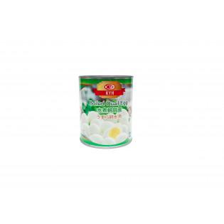 CANNED BOILED QUAIL EGG 50'S 罐头鹌鹑蛋 50枚装