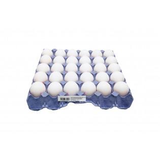 FRESH WHITE EGG ( 30 PCS/ TRAY) 新鲜白壳鸡蛋