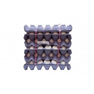 FRESH WHITE EGG ( 5 TRAY/ BUDDLE ) 新鲜白壳鸡蛋 5盘/ 捆